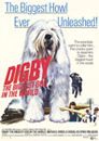 DIGBY FOR PRESIDNT